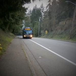 Catching the morning bus