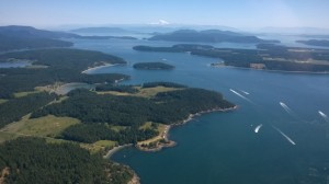 Boats darting all directions in the San Juan Island